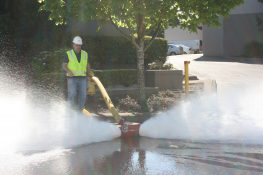Fire Flow Tests, How & Why